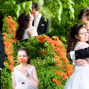 Plenerowa sesja ślubna może być zrobiona w formie spaceru po parku Bielska-Białej
